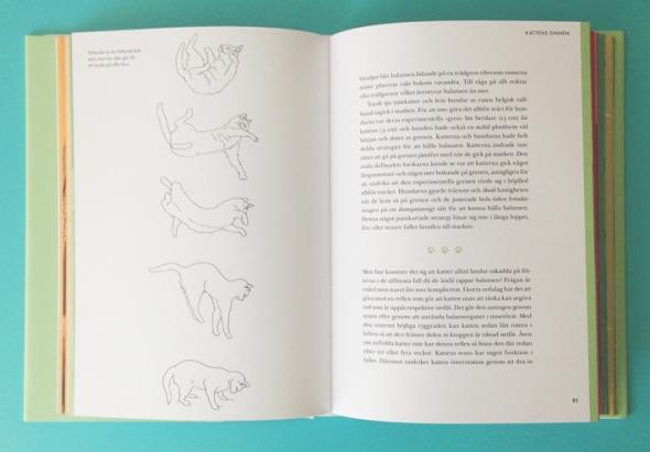 kattbok lindeberg 4
